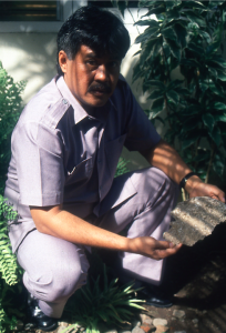 A photo of the last known evidence of the Javan Tiger, March 1993. The gentleman in the picture is Mr. Tri Wibowo, Superintendent of Meru Betiri National Park.